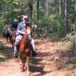 horseriders-300x229