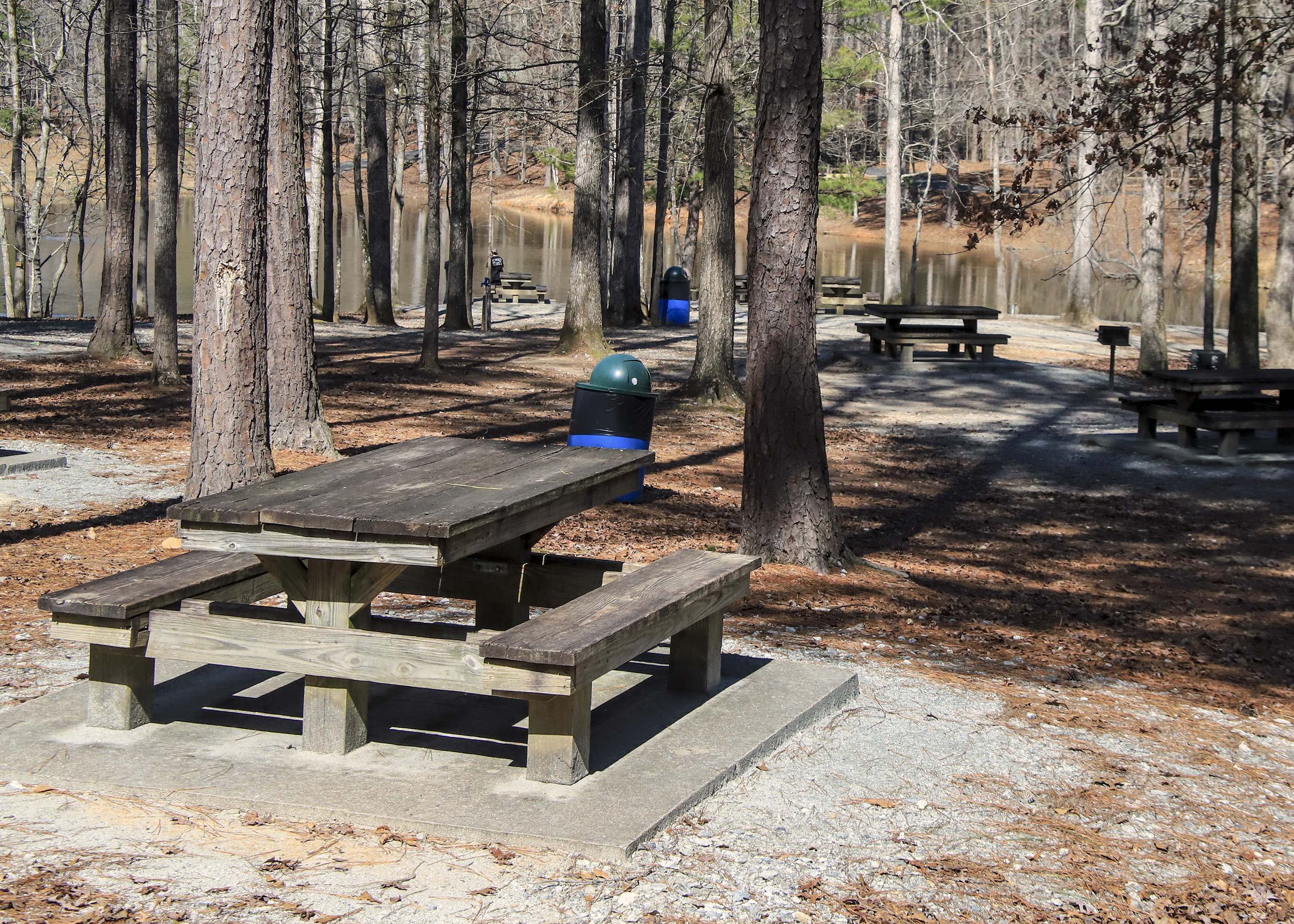 George Dissmeyer - Picnic Tables